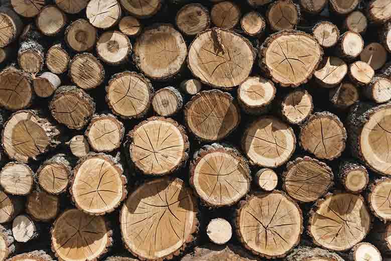 Sending Docker Logs to ElasticSearch and Kibana with FileBeat - Sarulabs